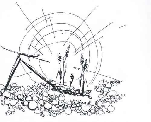 Das Weizenkorn Muss Sterben